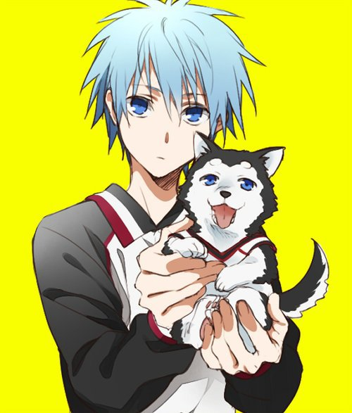 Resume fiction kuroko no basket