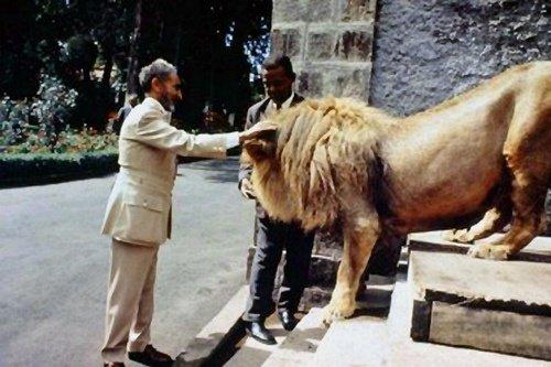 le roi du rastafarisme