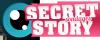 SecretStory-Sondages