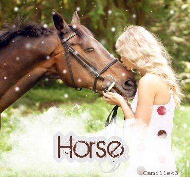 Bannière Horse