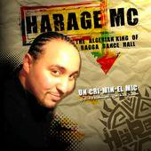 dj hdz remix harage mc feat moustafa 2011 / dj hdz remix harage mc feat moustafa 2011 (2011)
