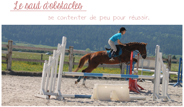 Le saut d'obstacles.