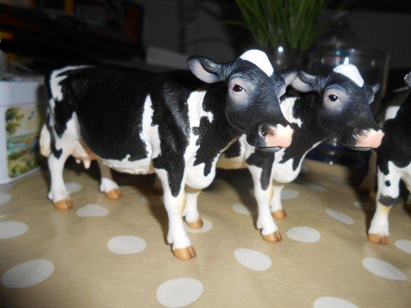 Nouvelles vaches ! Vaches et veauSimental Française + Vaches et taureau Holstein ( oui ça ma couter un bras mais bon ça valais le coup )