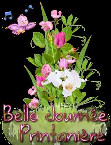 BELLE JOURNÉE DE PRINTEMPS