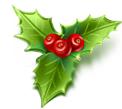 Idée décoration de Noel