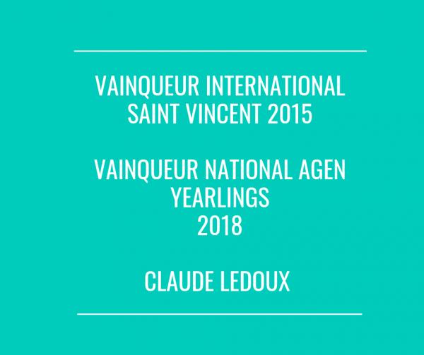 Sur OQUILL : Les pigeons de Claude Ledoux