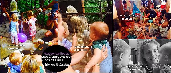 BIRTHDAY :   Le 18 Mars 2015 les jumeaux Tristan et Sasha fêtaient leur 1 an !