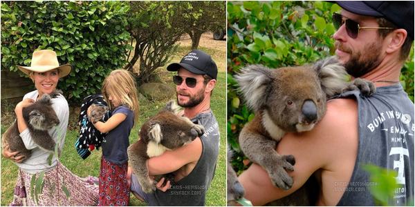 Février 2018 : Chris , sa femme et leurs enfants étaient au Kangaroo Island Wildlife Park + Divers infos