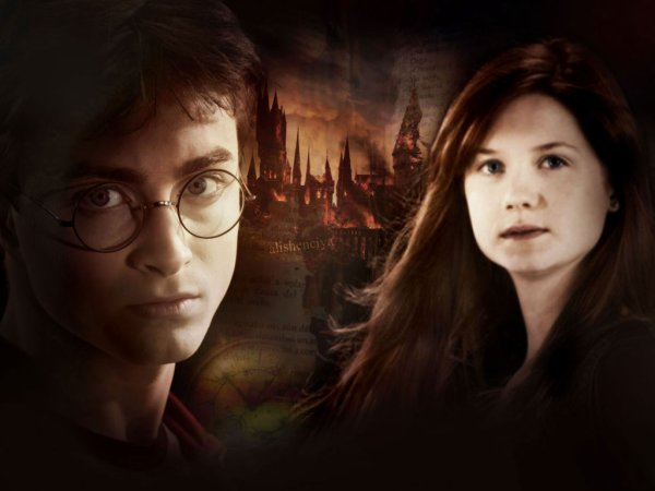 Love Story Of Harry and Ginny