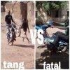 tangsouley