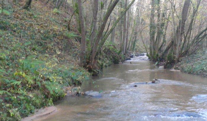 Le Cosne - Année 2014 - En amont de la passerelle des Mines