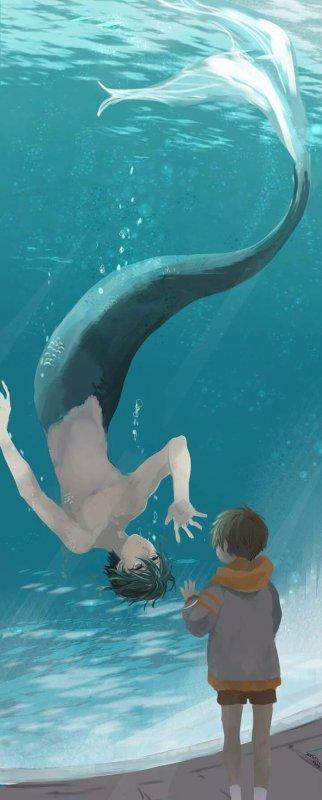 Le triton du parc aquatique