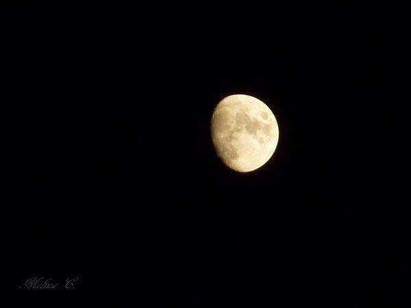 Il ne sert de rien à l'homme de gagner la Lune s'il vient à perdre la Terre.   [François Mauriac]