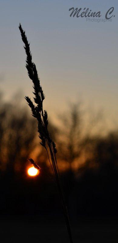 Quand nous avons le sac, il nous manque le blé ; quand nous avons le blé, il nous manque le sac.
