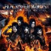 Set the World on Fire (album des Black Veil Brides)