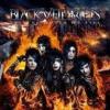 Set the World on Fire (album des Black Veil Brides)