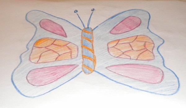 dessins de papillons