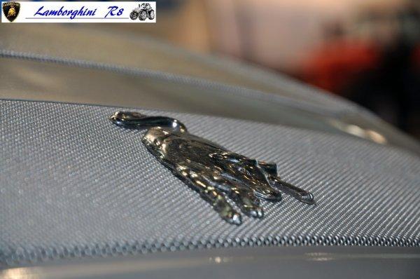 Nez du Lamborghini R8 270