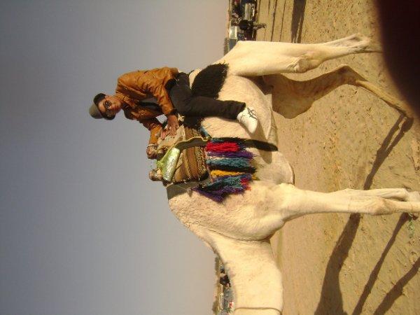 ma vie en sahara