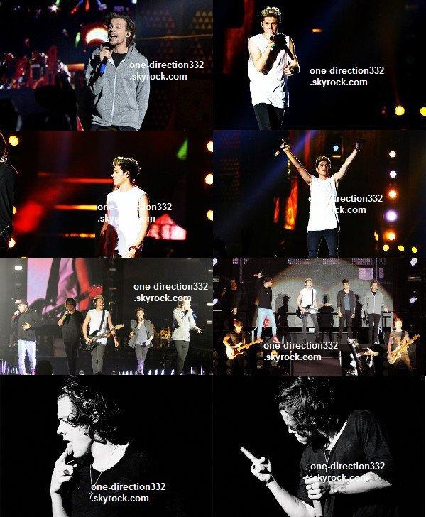 le 8 mai 2014 - les boys font leur concert à Rio De Janeiro.