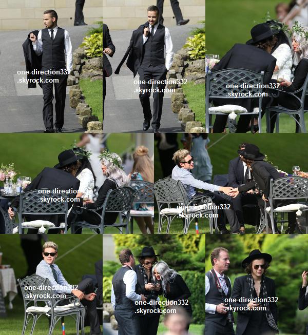 le 2o juillet 2o14 .|. Louis, Eleanor, Harry, Lou, Liam, Sophia et Niall au mariage de Jay.