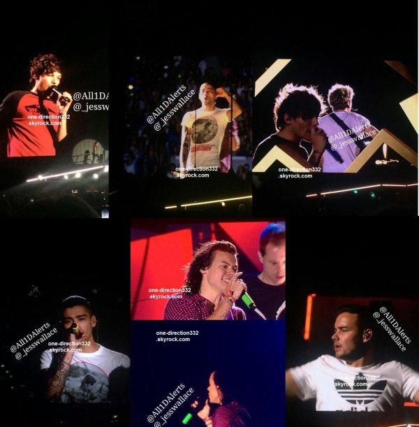 le 20 février 2015 - les boys on fait leur concert à Perth, Patersons Stadium