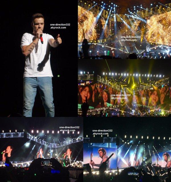 le 28 février 2015 - les boys font leur concert àTokyo, Saitama Super Arena