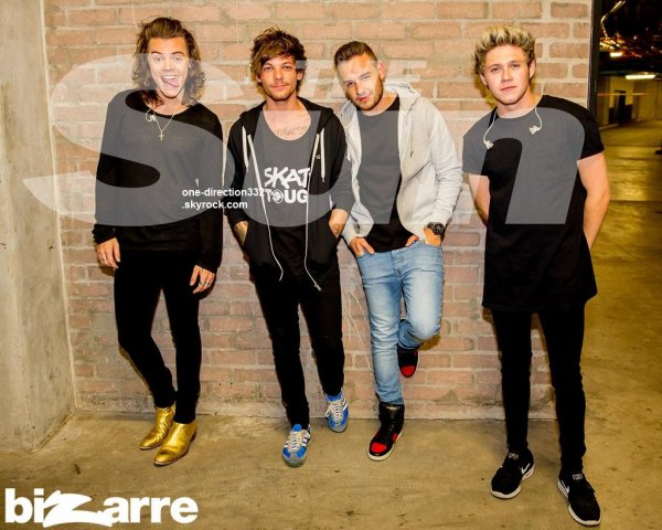 Harry, Liam, Louis & Niall au Cap pour The Sun