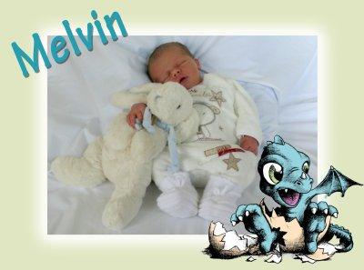 Naissance d'un petit Yong.....MELVIN