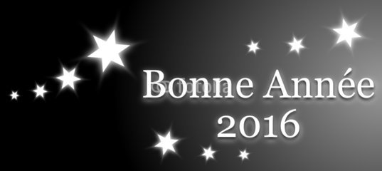 je vous souhaite a tous et toutes une bonne et heureuse année biss ariane