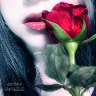 صباح الورد لأغلى عطر 2725304562_1