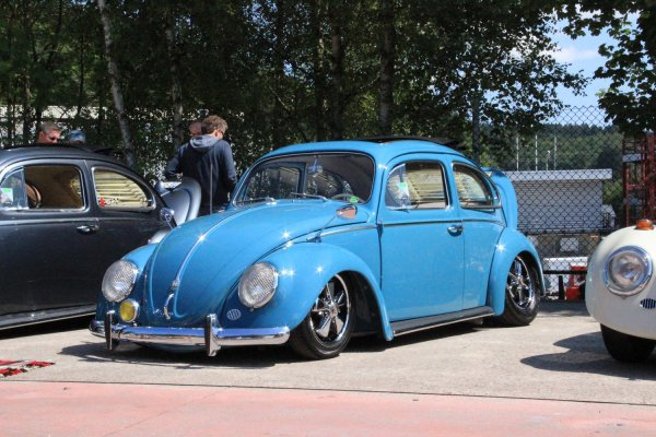 Bug Show 2015