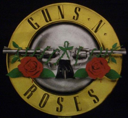 $~ Guns And Roses ~$