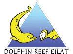 Le récif des dauphins