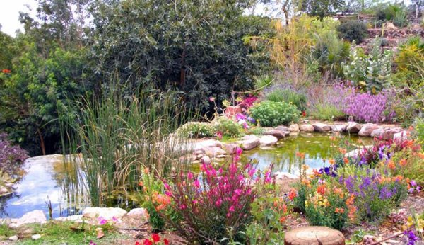 Botanical Garden in Eilat