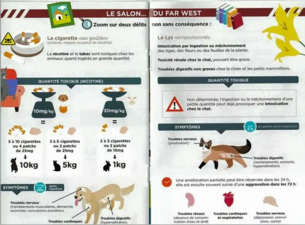 ATTENTION A VOS ANIMAUX