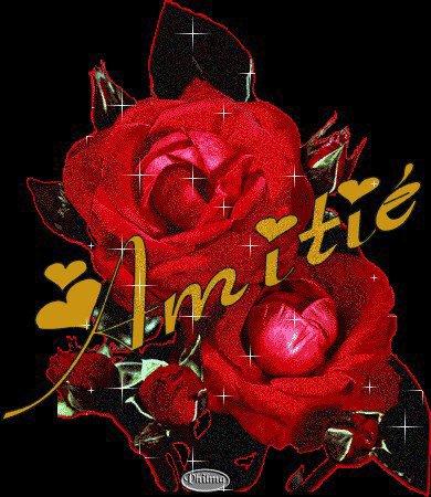 une rose pour joelle