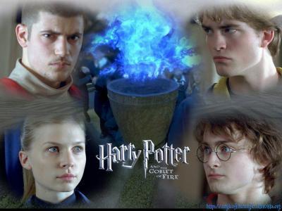 Victor krum fleur de lacour harry potter et cedric - Harry potter et la coupe de feu cedric diggory ...