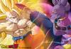sangoku vs le dieu de la destruction