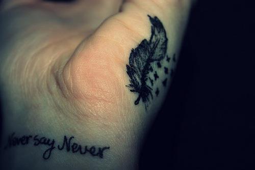 Les plumes !
