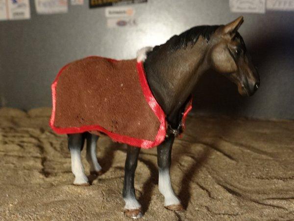 Achat au salon du cheval