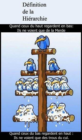 La Hiérarchie!!!