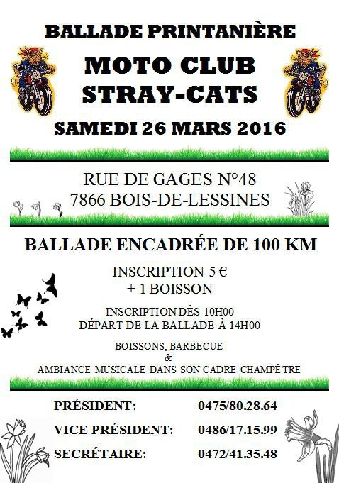 Balade des Stray-Cats