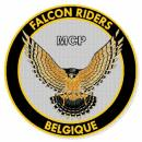 Photo de mcp-falcon-riders