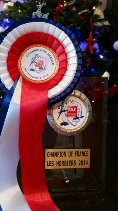 champion france norwich 2014