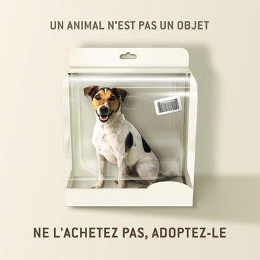 Je Ne Suis Pas Un Objet  !!!!!