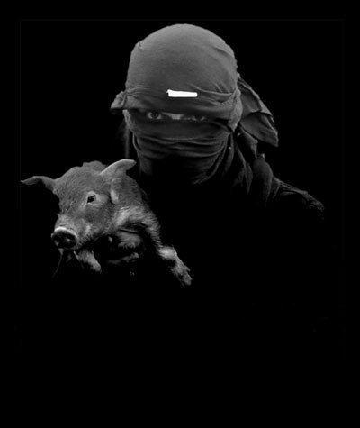 Vivisection: Quand Les Chercheurs Humilient Un Singe En Plus De Leurs Souffrances