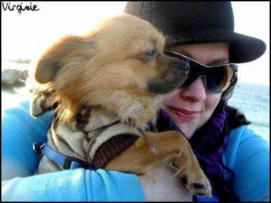 """-- -- """" Si tu veux un ami, Achète toi un chien. """"-- --"""