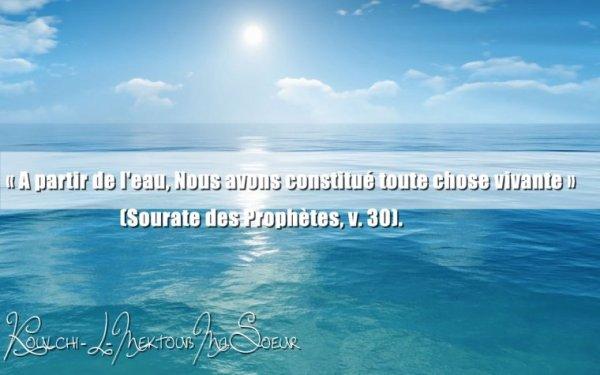 ♥ Lui qui de l'eau a créé l'homme, puis l'institua par l'alliance et la consanguinité [ Sourate 25 ; Verset 54 ]