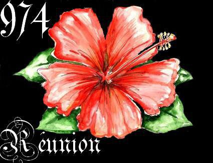La reunion 974 blog de natty420 for Bouquet de fleurs 974